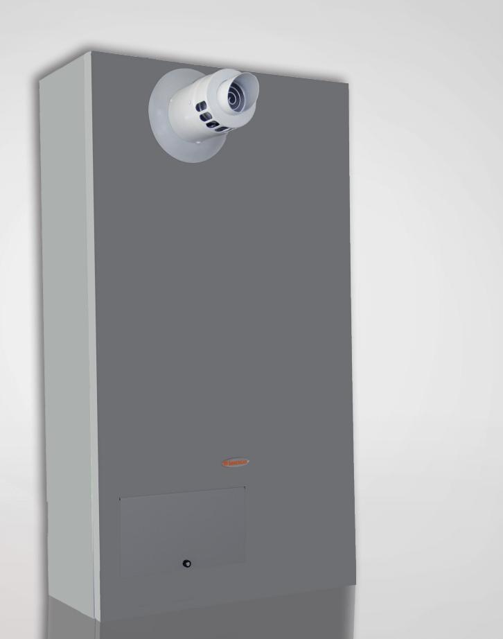 Immergas Boiler